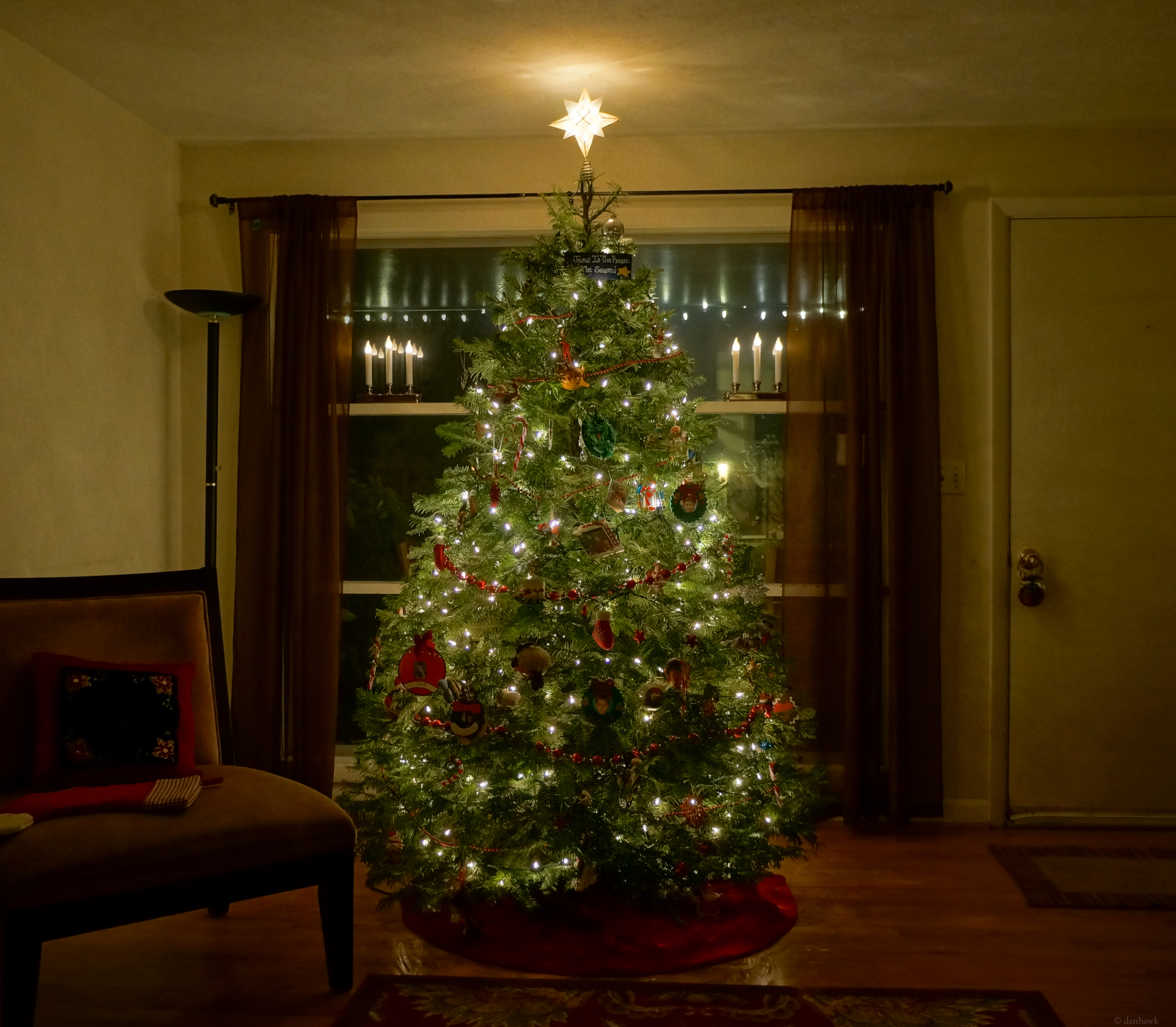 This Year's Tree | 365 Project | Dec 2nd, 2012