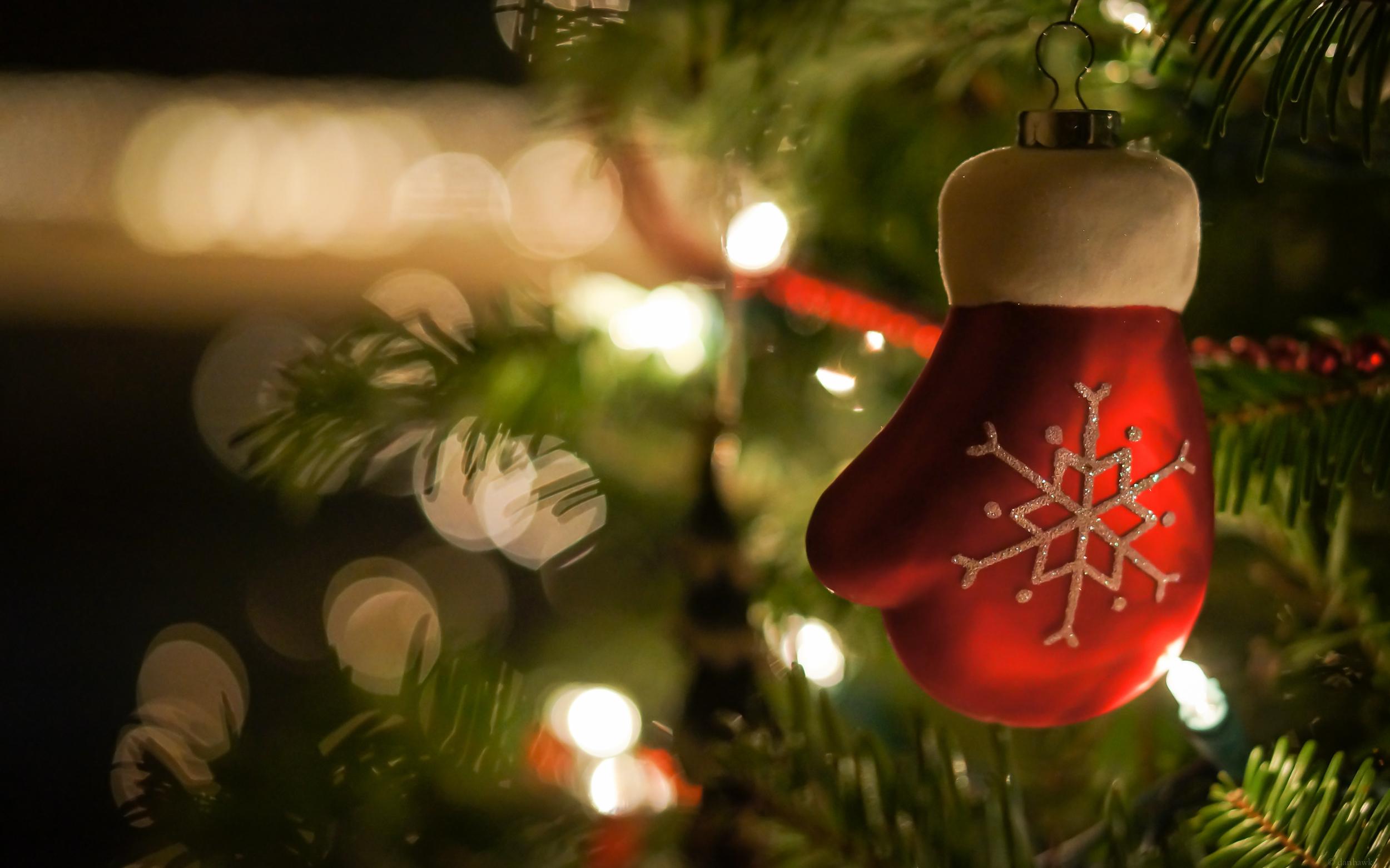 Christmas Mood | 365 Project | Dec 15th, 2012  Downloads |  Desktop  |  iPad