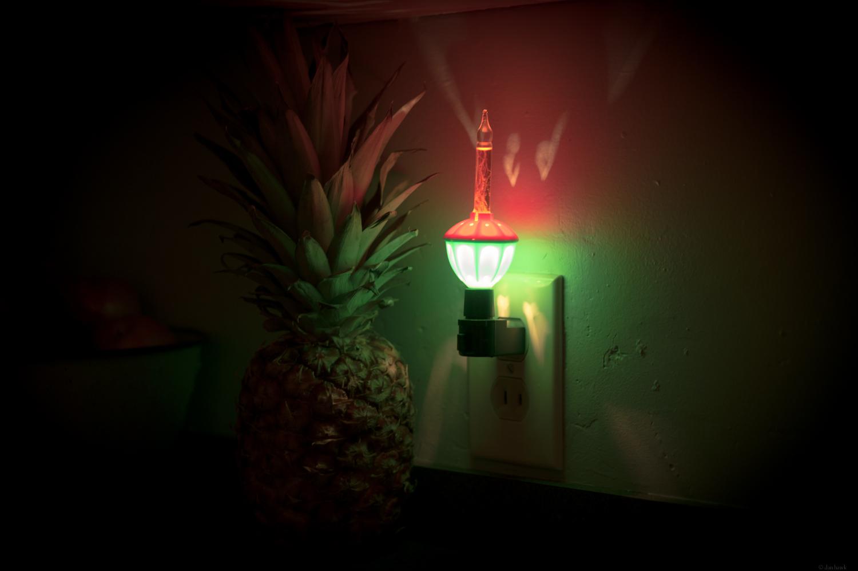 Tropical Bubble Light | 365 Project | Dec 20th, 2012