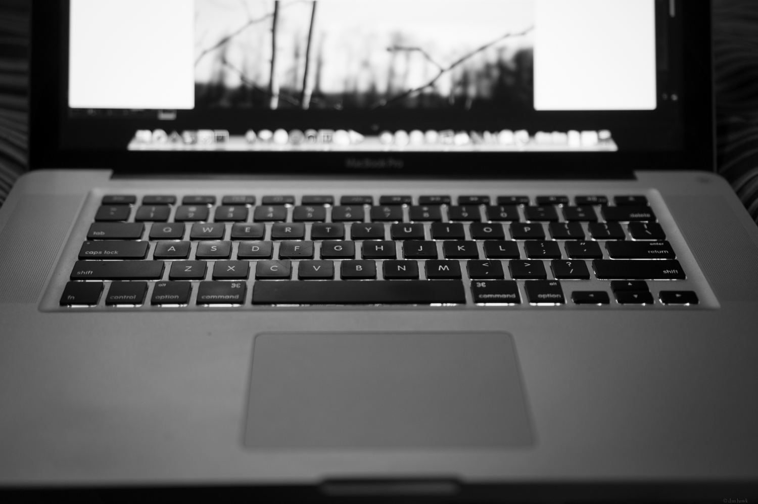 Editing | 365 Project | Feb 3rd, 2013