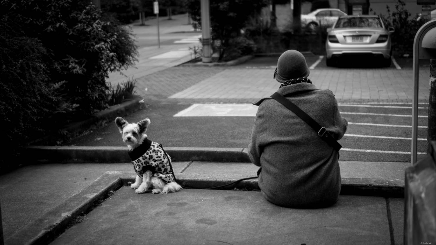 Woman and Dog | 365 Project | March 21st, 2013 | 35mm, f/1.8, ISO 100, 1/1250