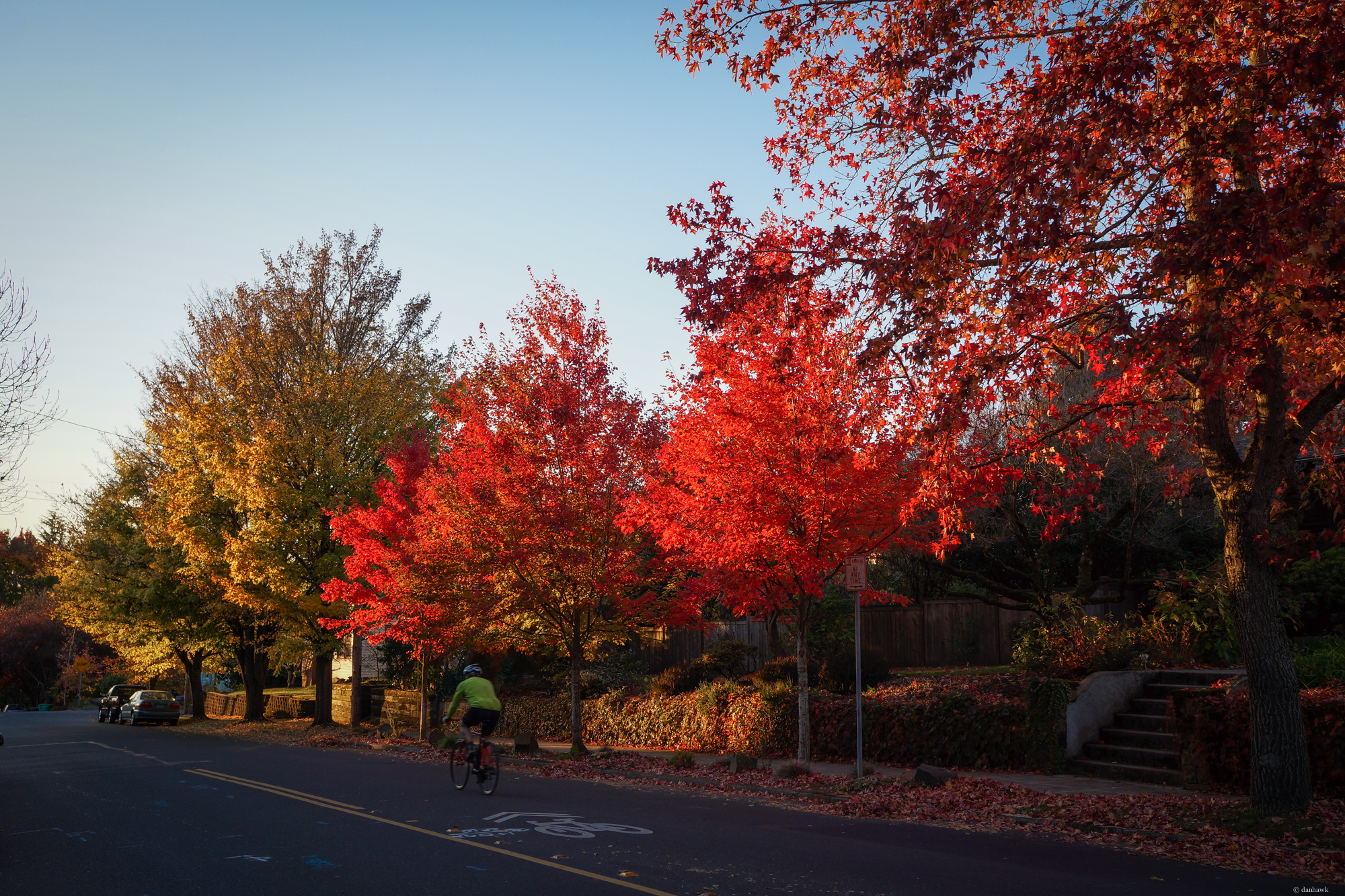 Fall Bike Commute | 24mm, f/5, ISO 100, 1/125