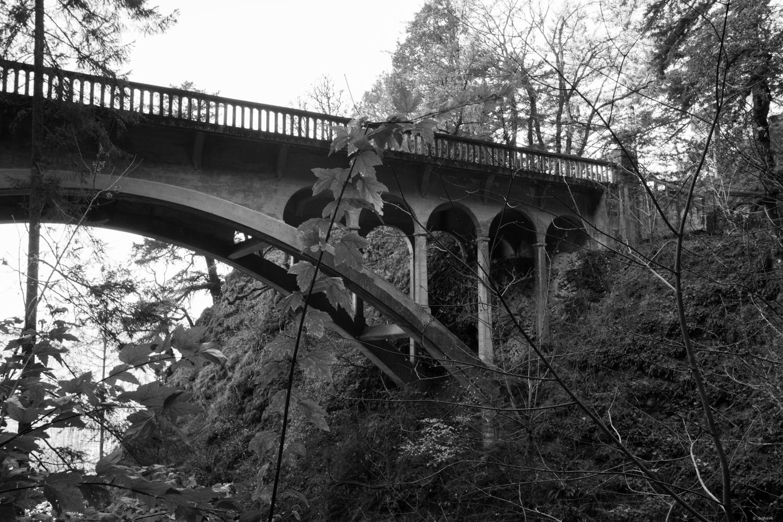 Shepard's Dell Bridge.jpg