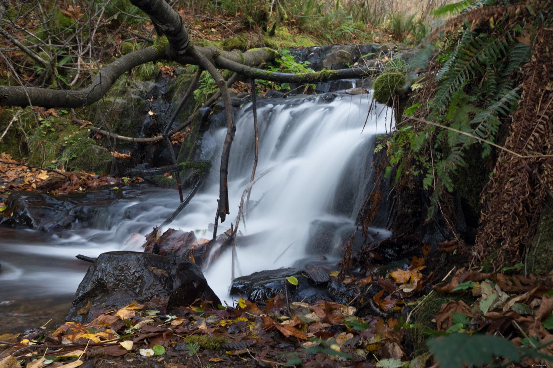 Tiny Waterfall.jpg
