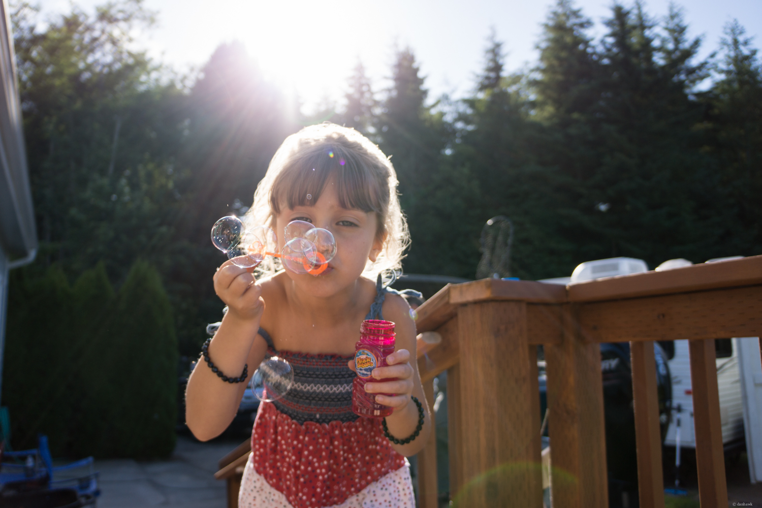 Blowin' Bubbles | July 4th