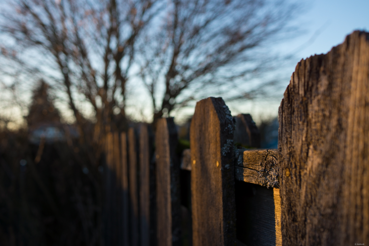 Old Fence | 24mm, f/3.5, ISO 100, 1/160