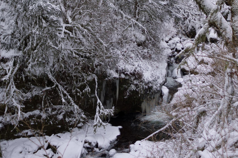 icicle overhang.jpg