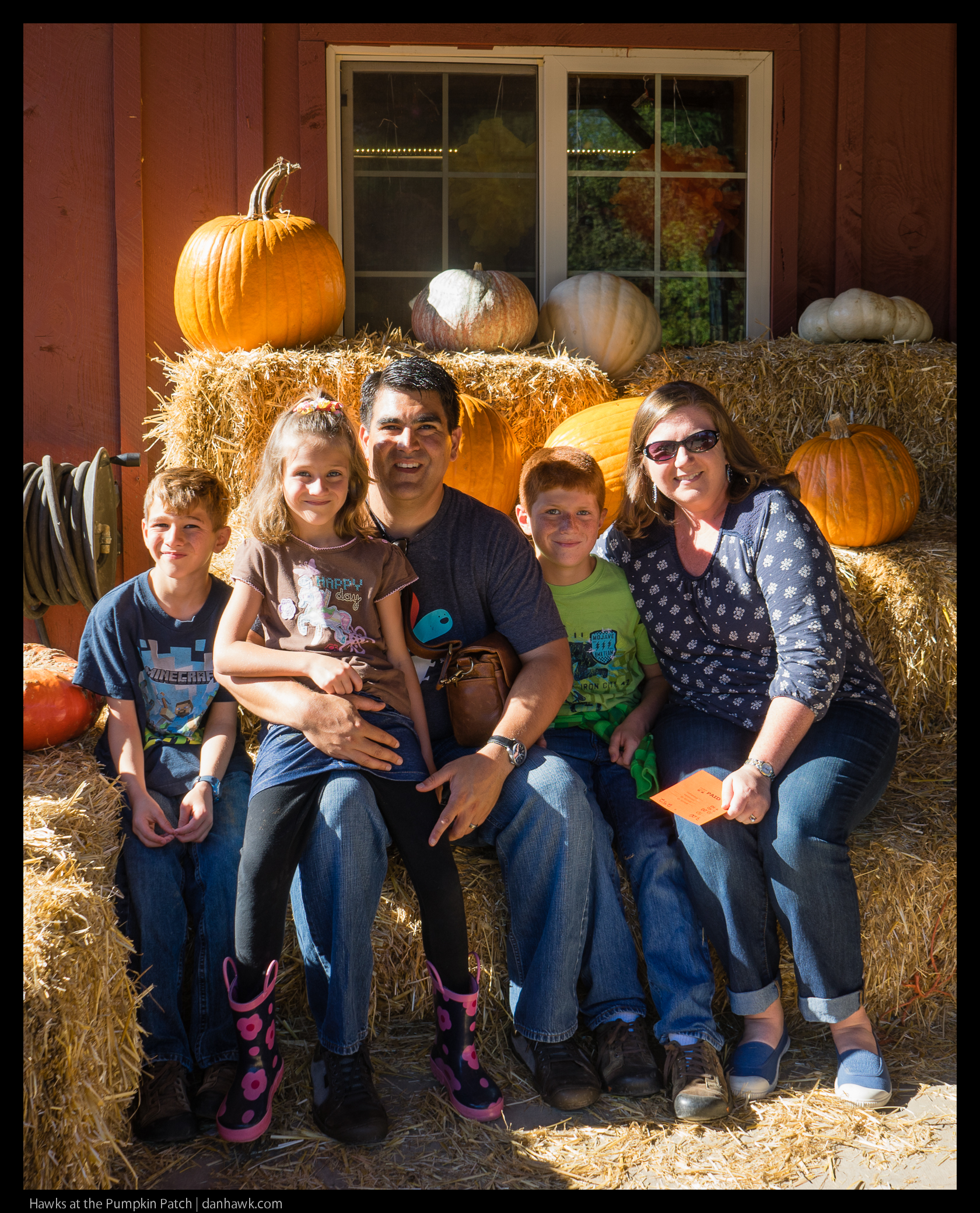 Hawks at the Pumpkin Patch