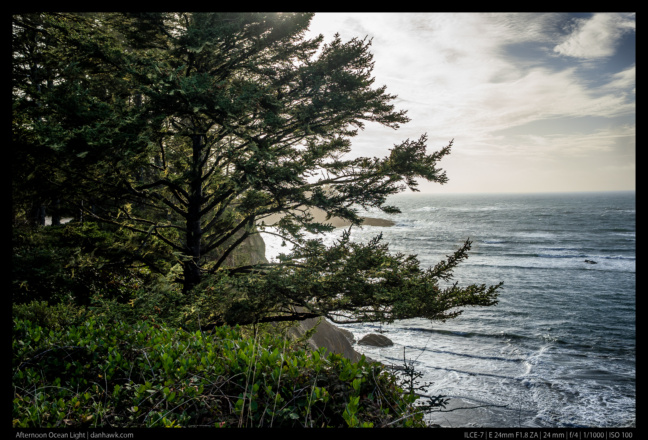 Afternoon Ocean Light