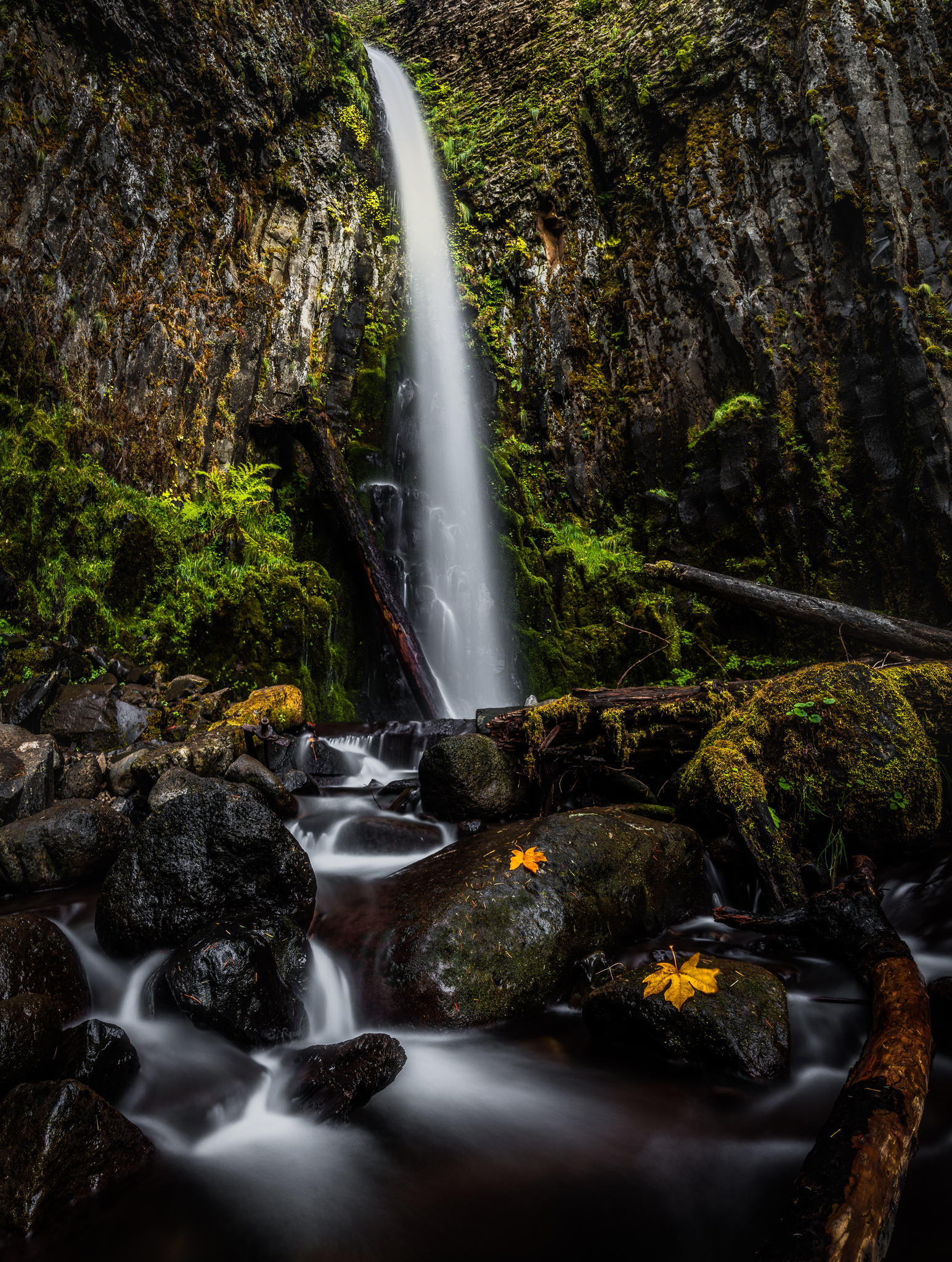 Dry Creek Falls by Autumn.jpg