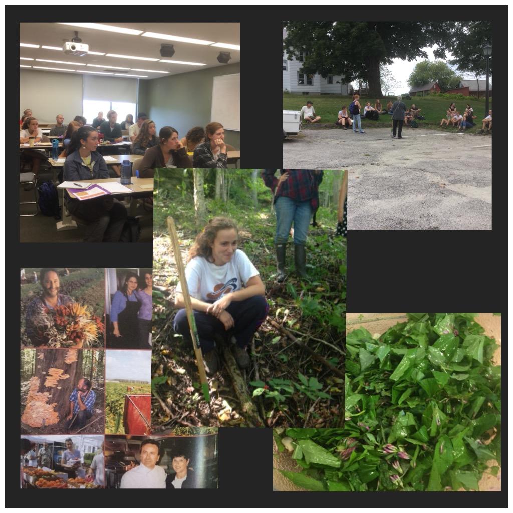 Wildcrafting Class, Green Mountain College