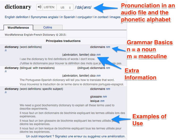 online dictionary example