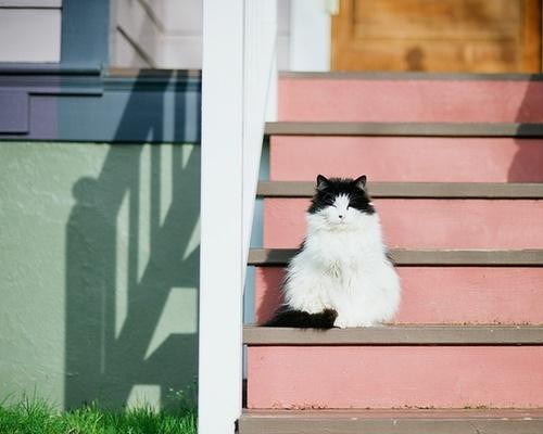 on stairs.jpg