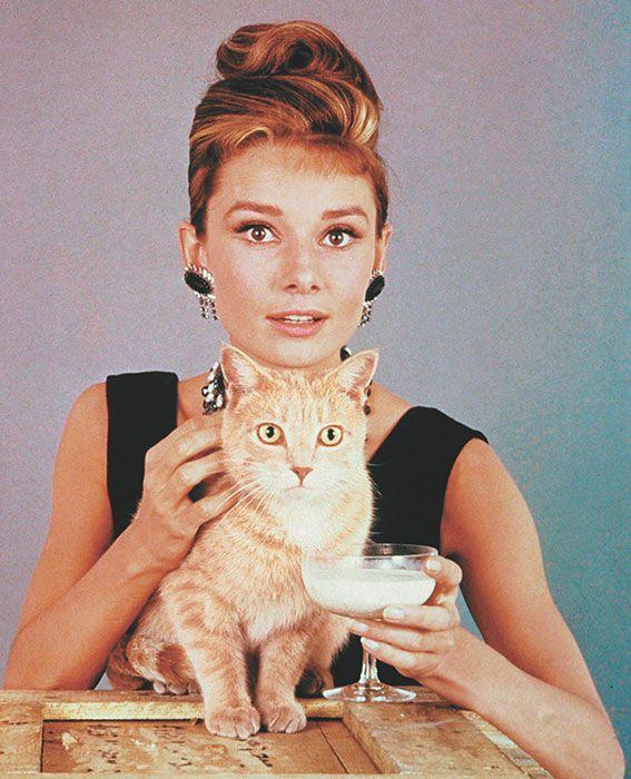 Chic Cat Lady.jpg