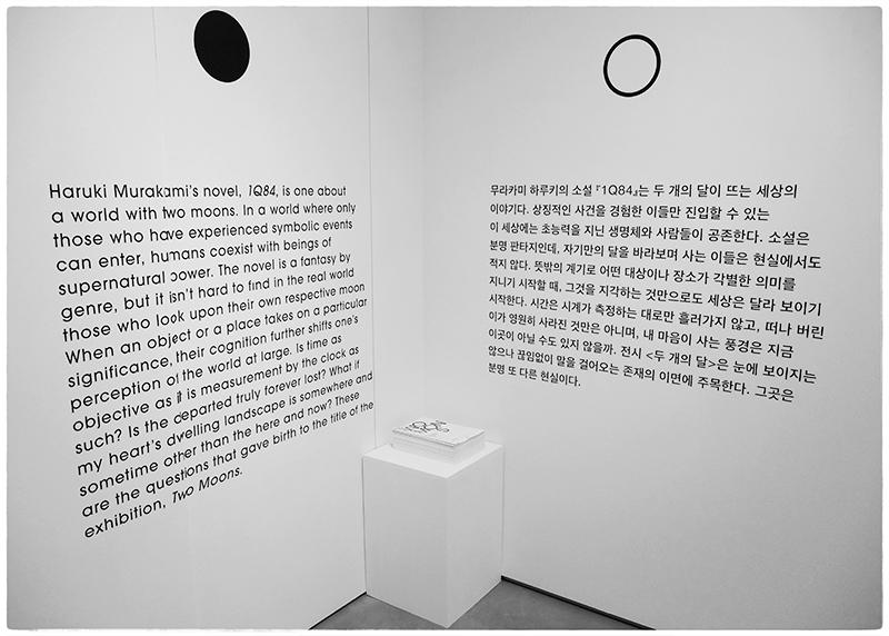 2015 Two Moons Exhibition Statement