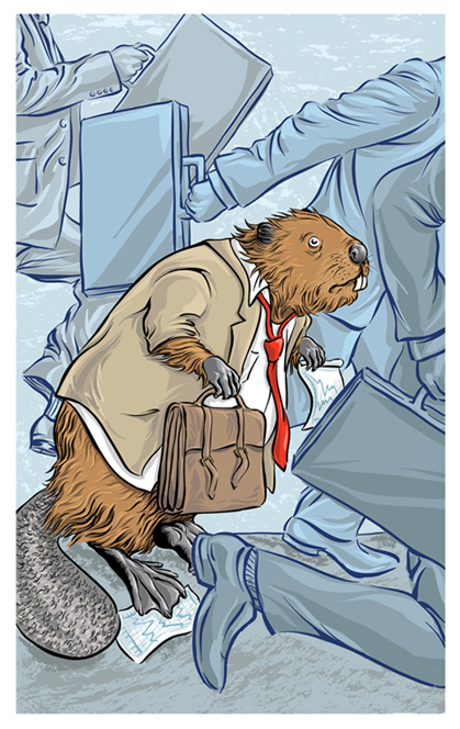 Beaver_Cover_Website.jpg