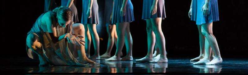DANCE ESCAPE, UNIVERSITY OF CALIFORNIA IRVINE