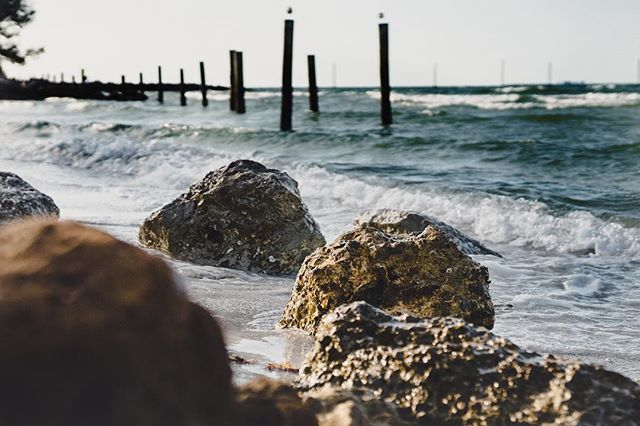 The shore of Tampa Bay #annamariaisland #a7iii #sonya7iii #photography #florida