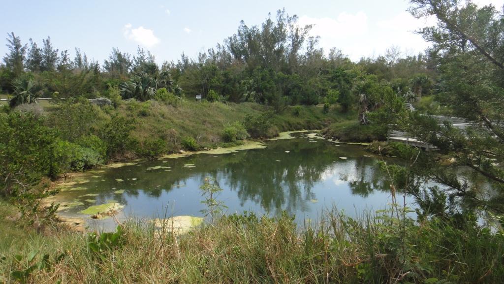 Cooper's Island Saltwater Pond