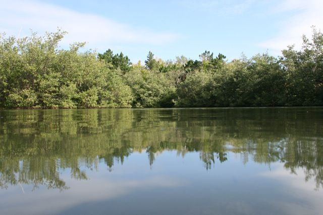Bartram's Pond at Stokes Point