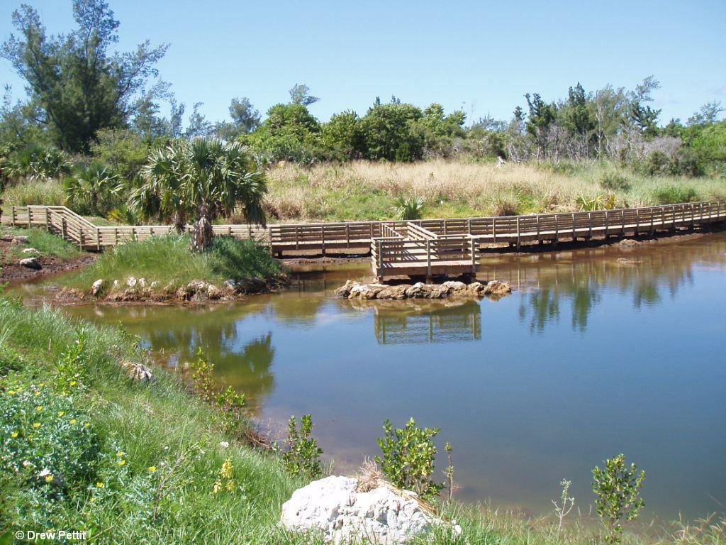 Cooper's Island pond