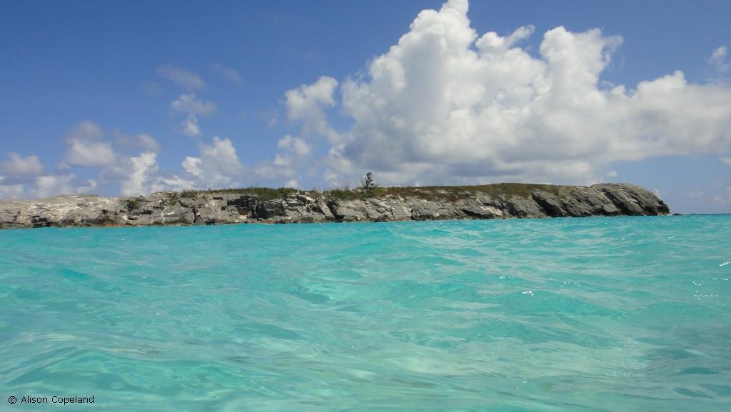 Rushy Island