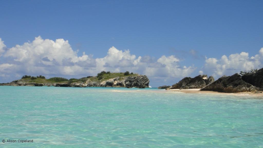 Charles Island and beach