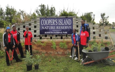 Soccer team planting endemic and native plants at Cooper's Island