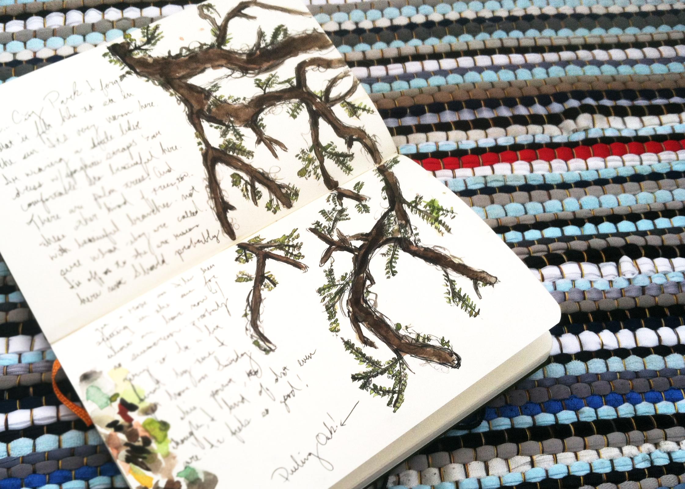 Dueling Oak tree / Live Oak tree watercolor sketch