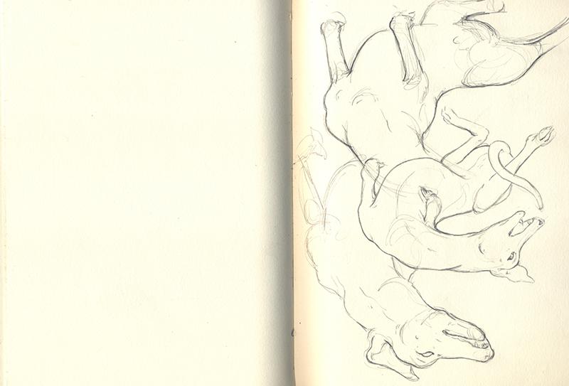 Sketchbook_nicomi-nix-turner.jpg