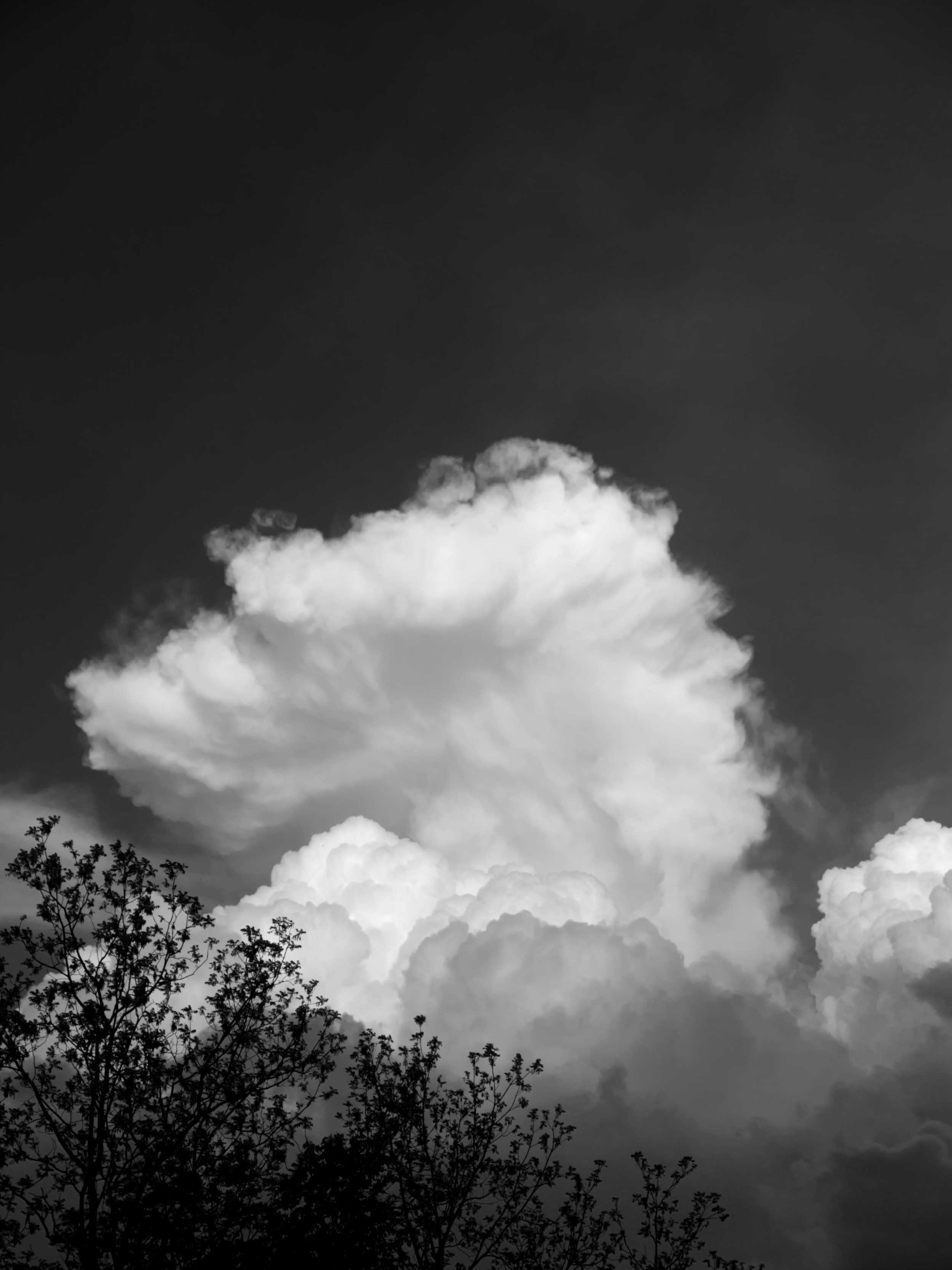 We all have spent time during our lives imagining things in the randomness of clouds. Sheep, elephants, maybe a dragon....But what happens when you see something so well formed that no imagination is necessary to witness it?
