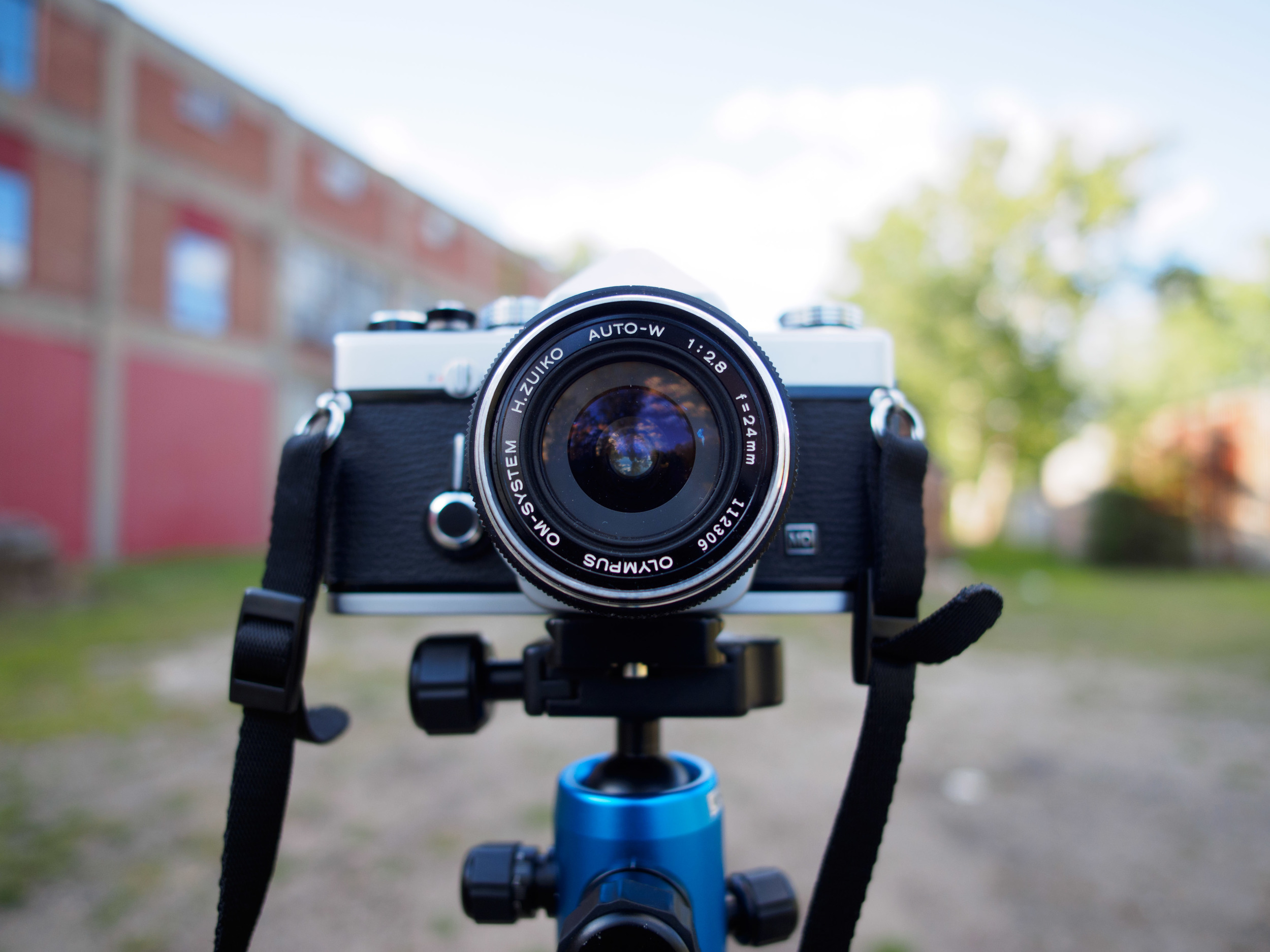 The 12mm f/2 wide open at f/2 SOOC.