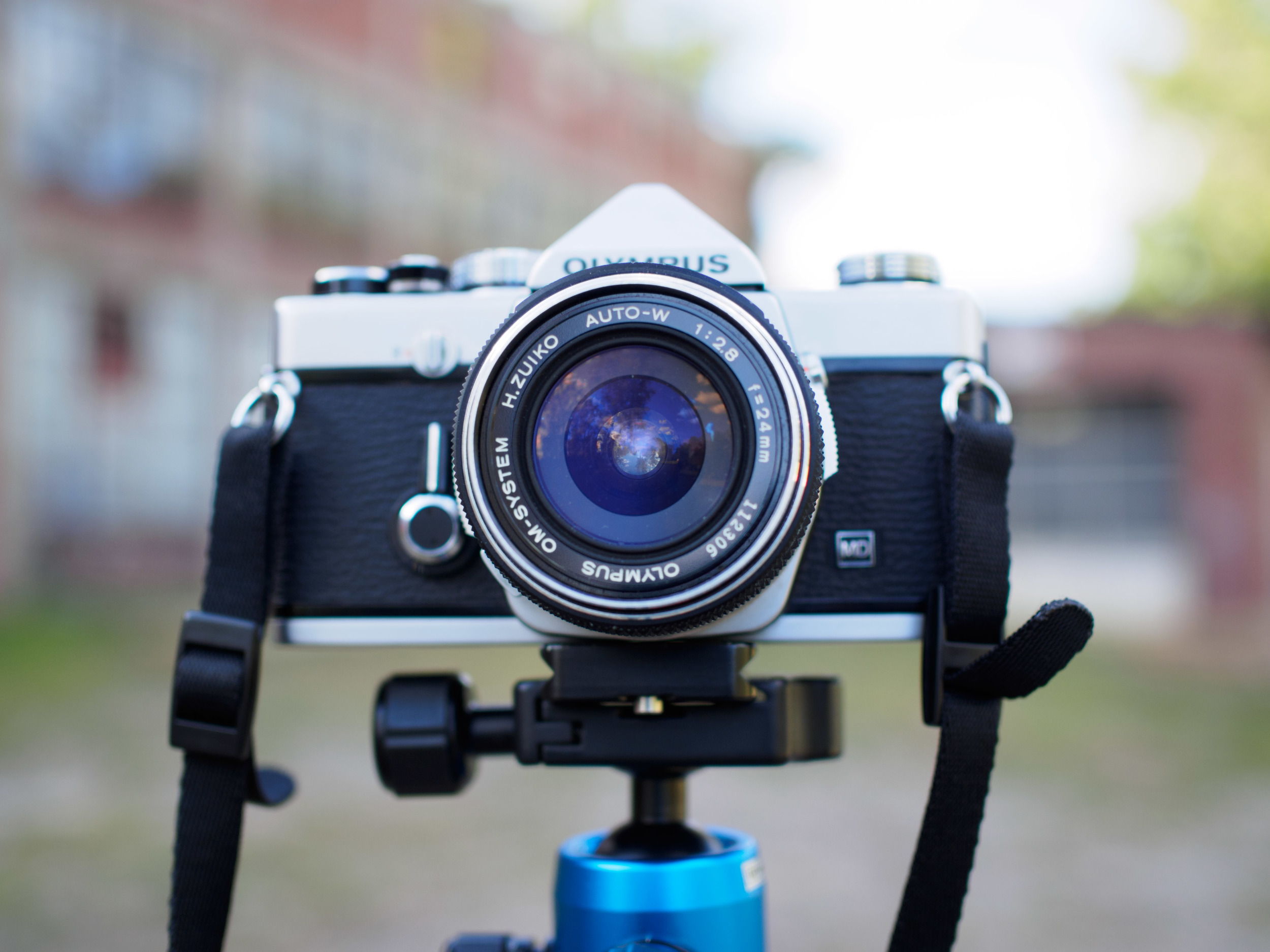 A wonderful walk around lens that works perfectly for an intimate portrait lens, or a versatile street photography lens.