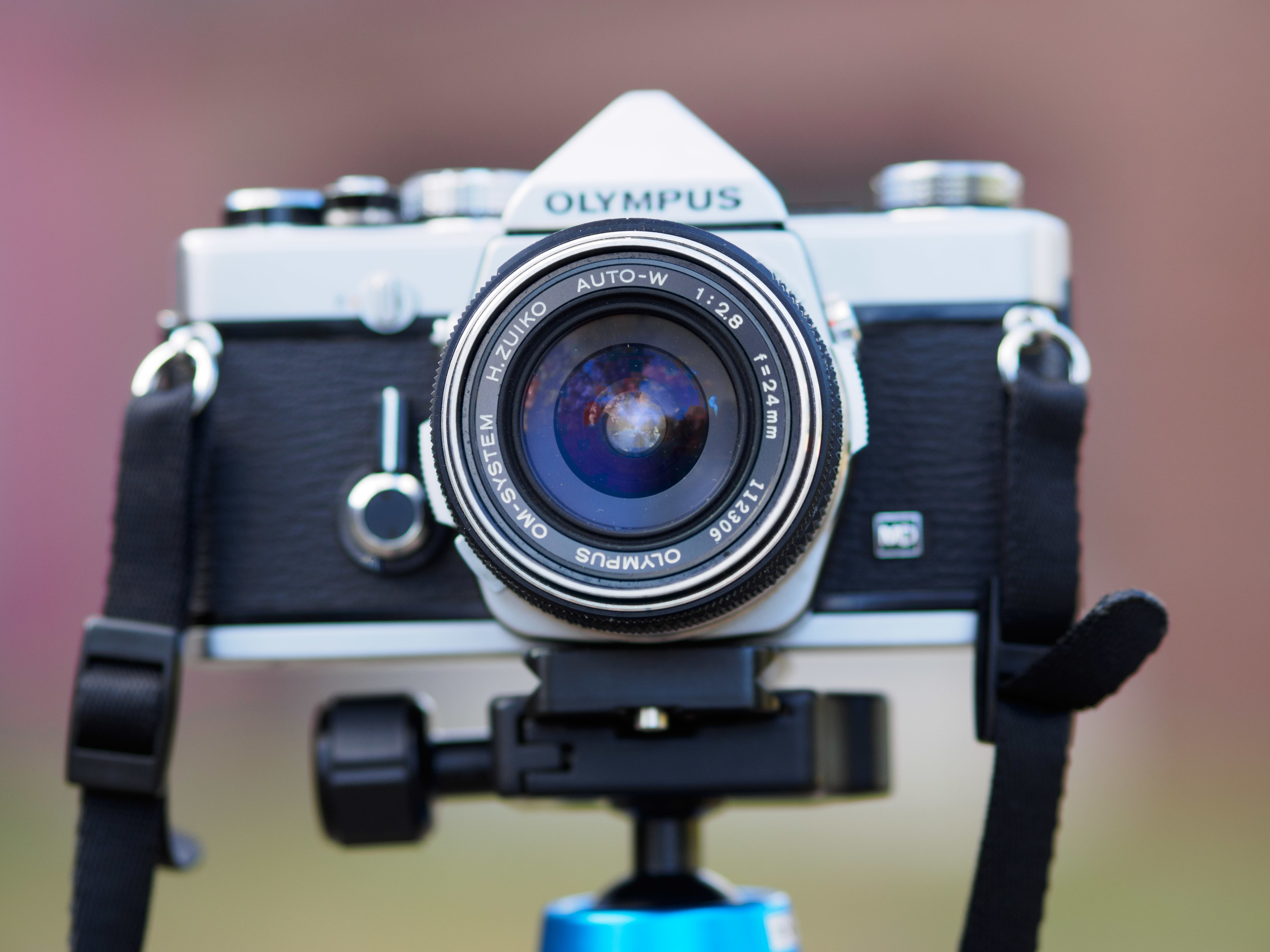 Stand back, compose, and be wowed. I am always smiling when this lens is on my camera.