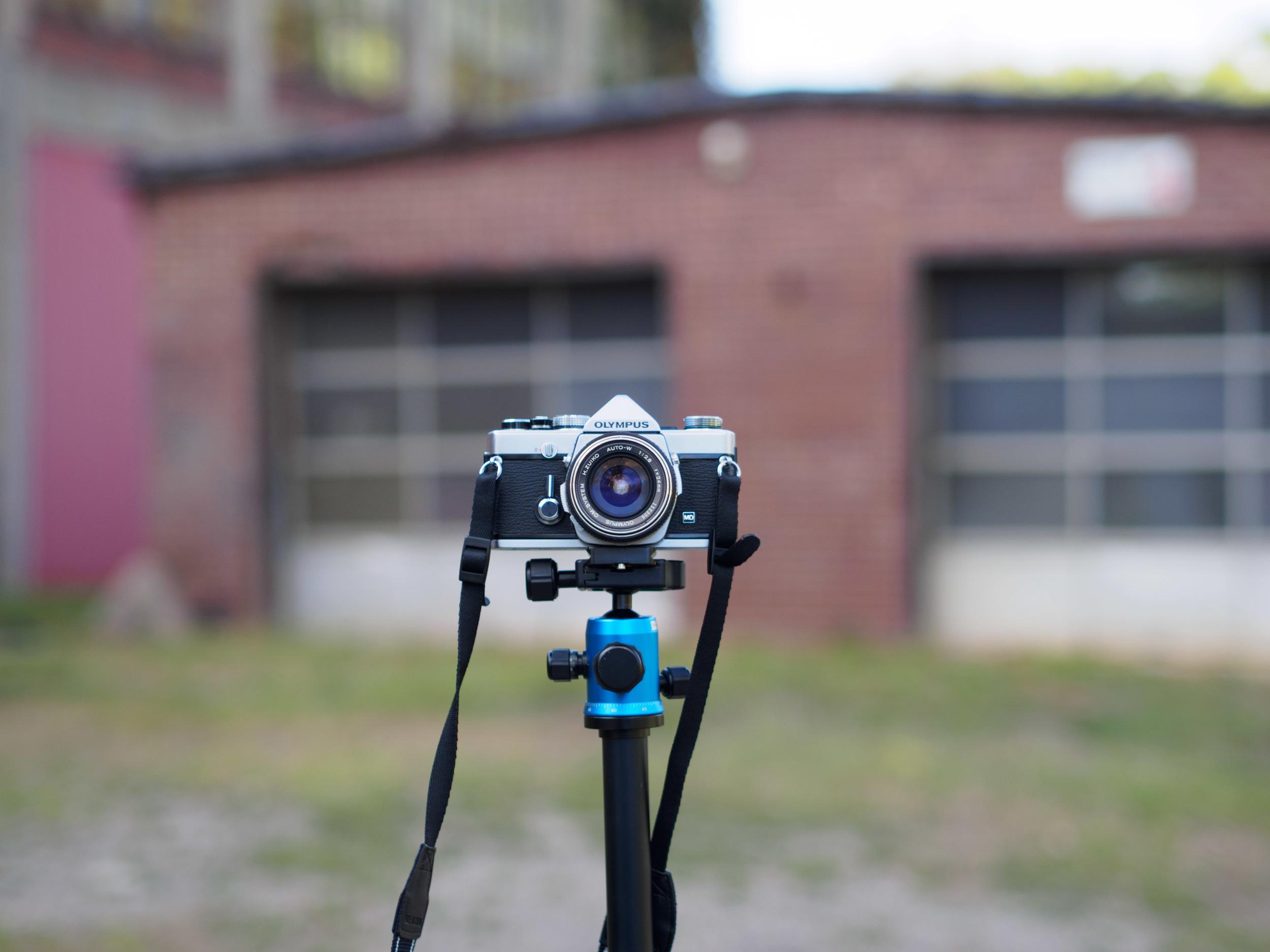 mZuiko 45mm f/1.8 7 feet from subject.