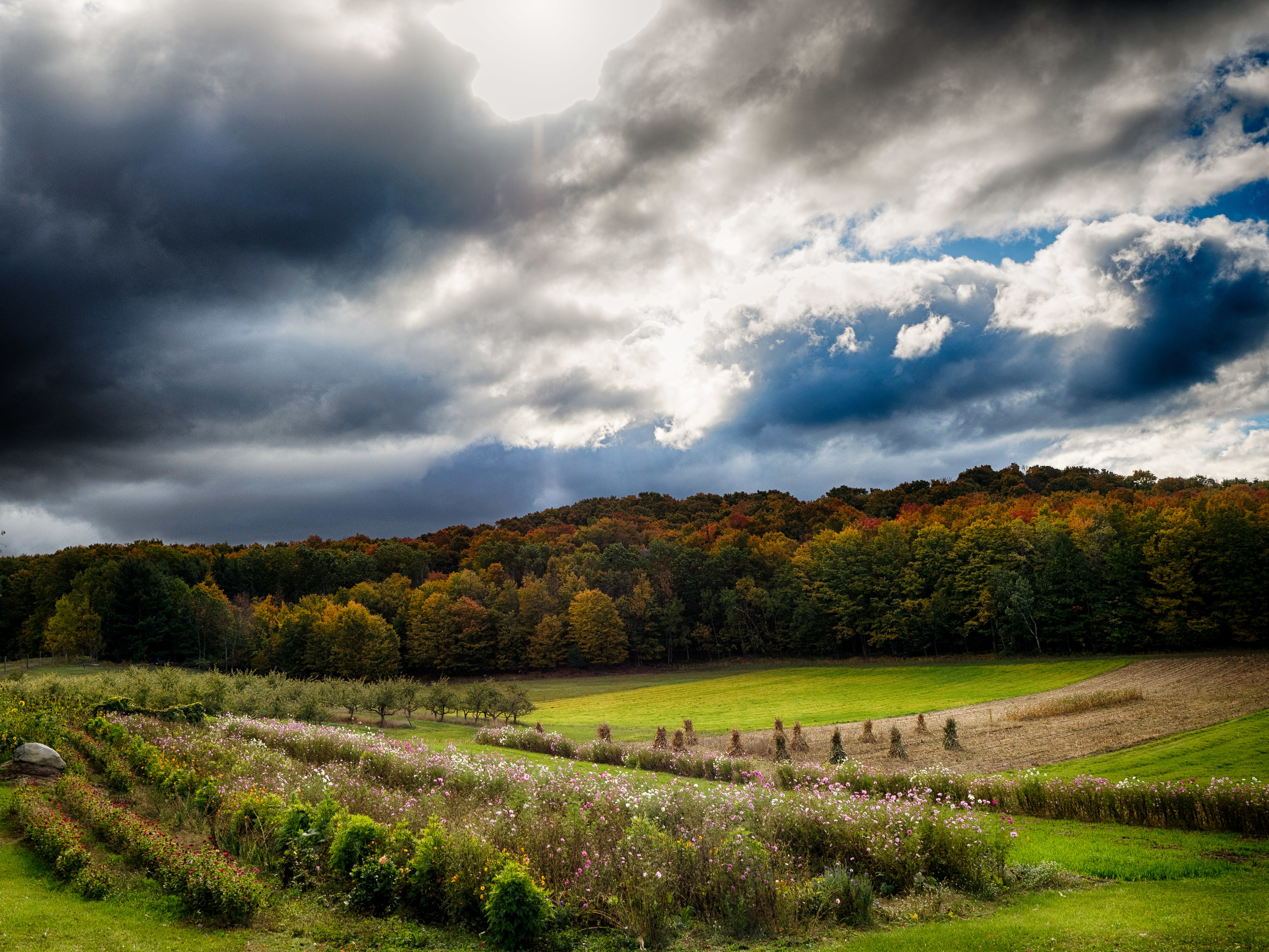 The first image of the day taken on M22 near Empire Michigan. M22 was just voted America's most scenic fall drive!