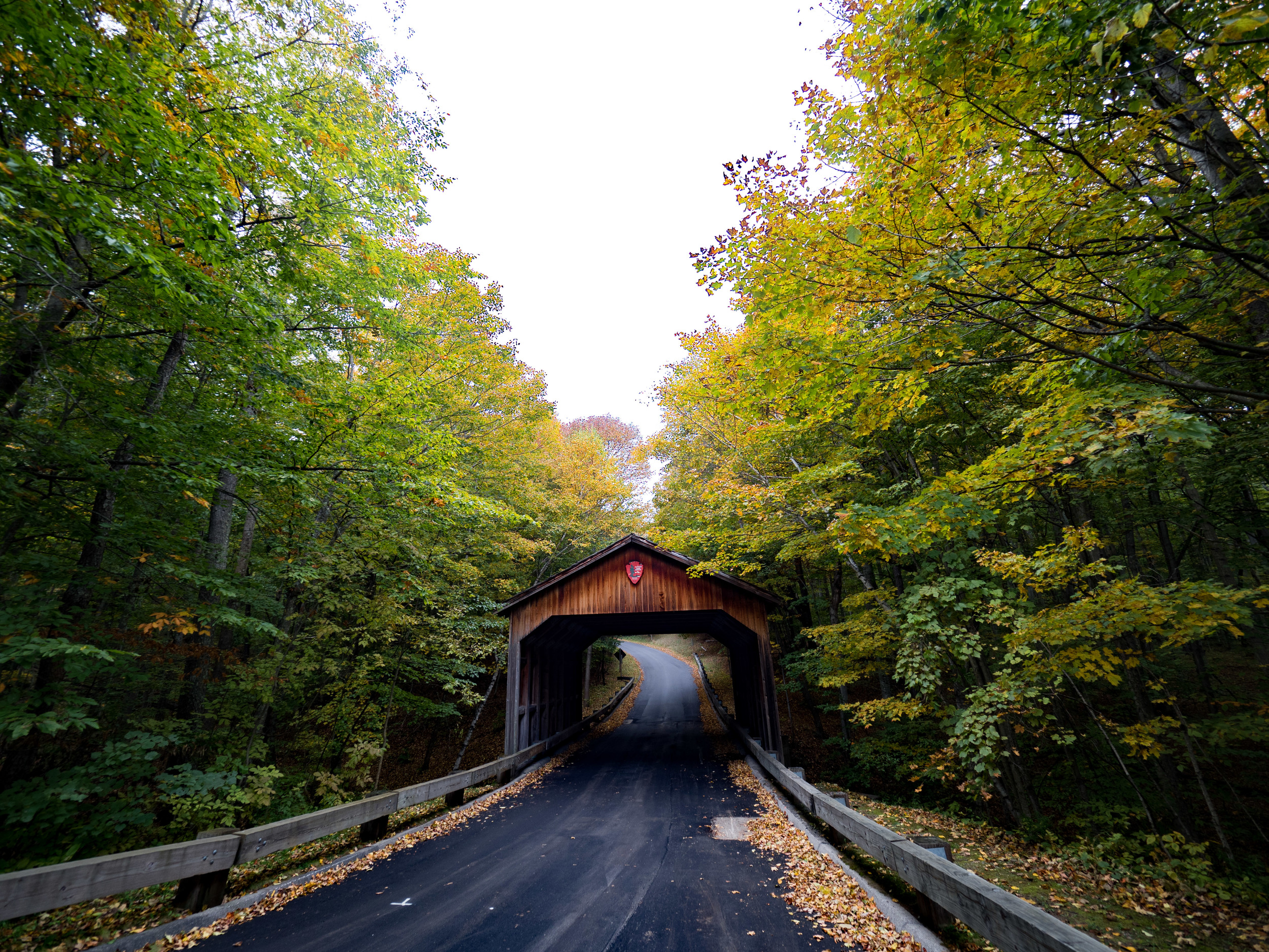 The entrance to Sleeping Bear National park is the Pierce Stocking Drive. You are greeted with this quaint wooden covered bridge and tree lined drive.