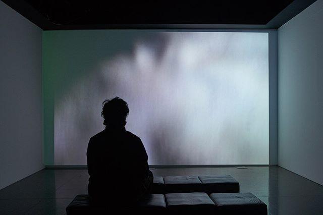 Hoje encerra  #PLAGa no MuMA (Museu Municipal de Arte / Curitiba ), agradeço muito a todos que visitaram 🙌😊 agradecimentos especiais  @marinaramos (curadoria) @rodrigoferreira.marques (#MuMA) @alelefur ( centrodeartedigital MuMA)  @fcccuritiba _ até próxima!! #audioarte #artedigital #videoarte #artecontemporanea #arteimersiva #fundacaoculturaldecuritiba #antoniowolff #videoart #immersiveart #soundart
