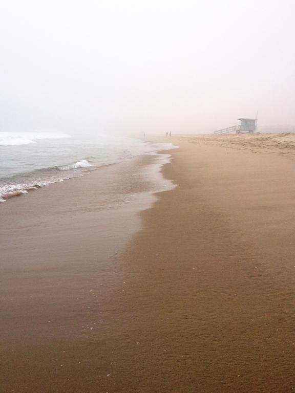 ShoreFog3.jpg