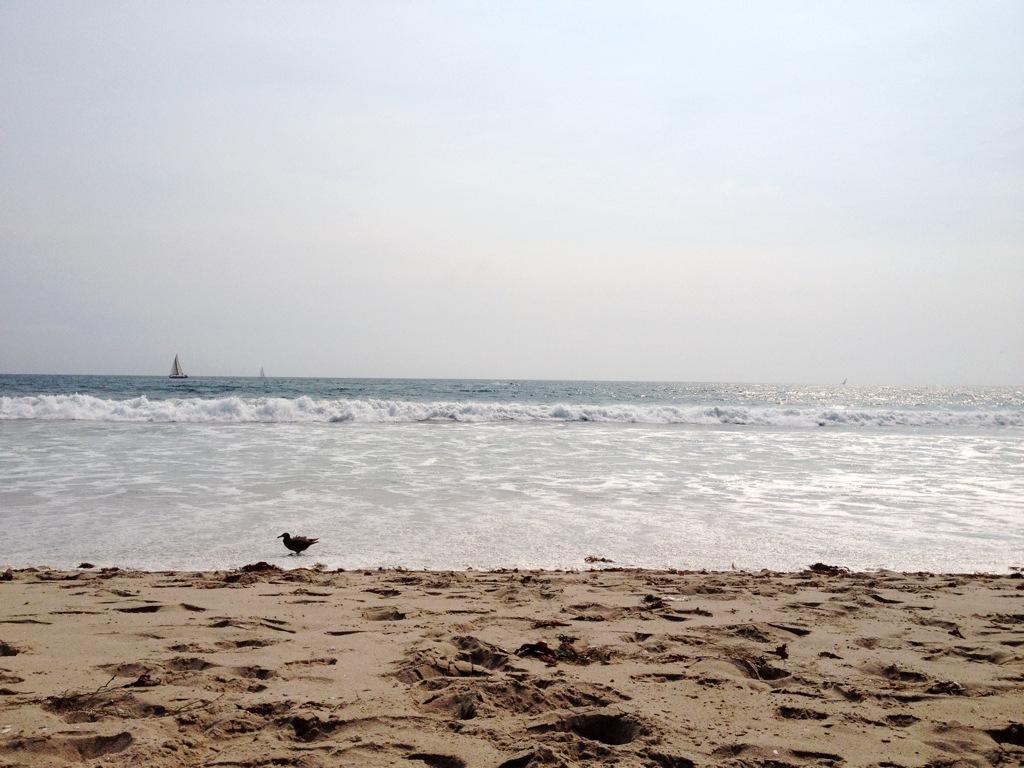 BeachSpinning1.jpg