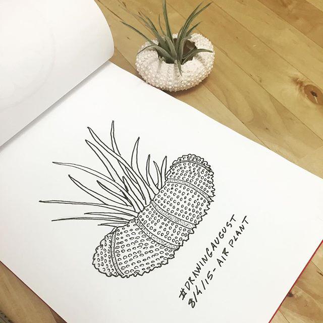 DrawingAugust 4.jpg