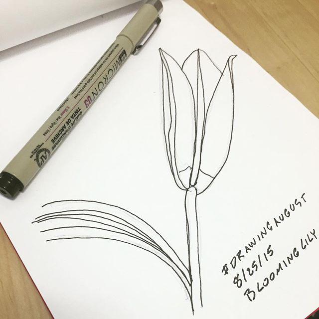 DrawingAugust 25.jpg