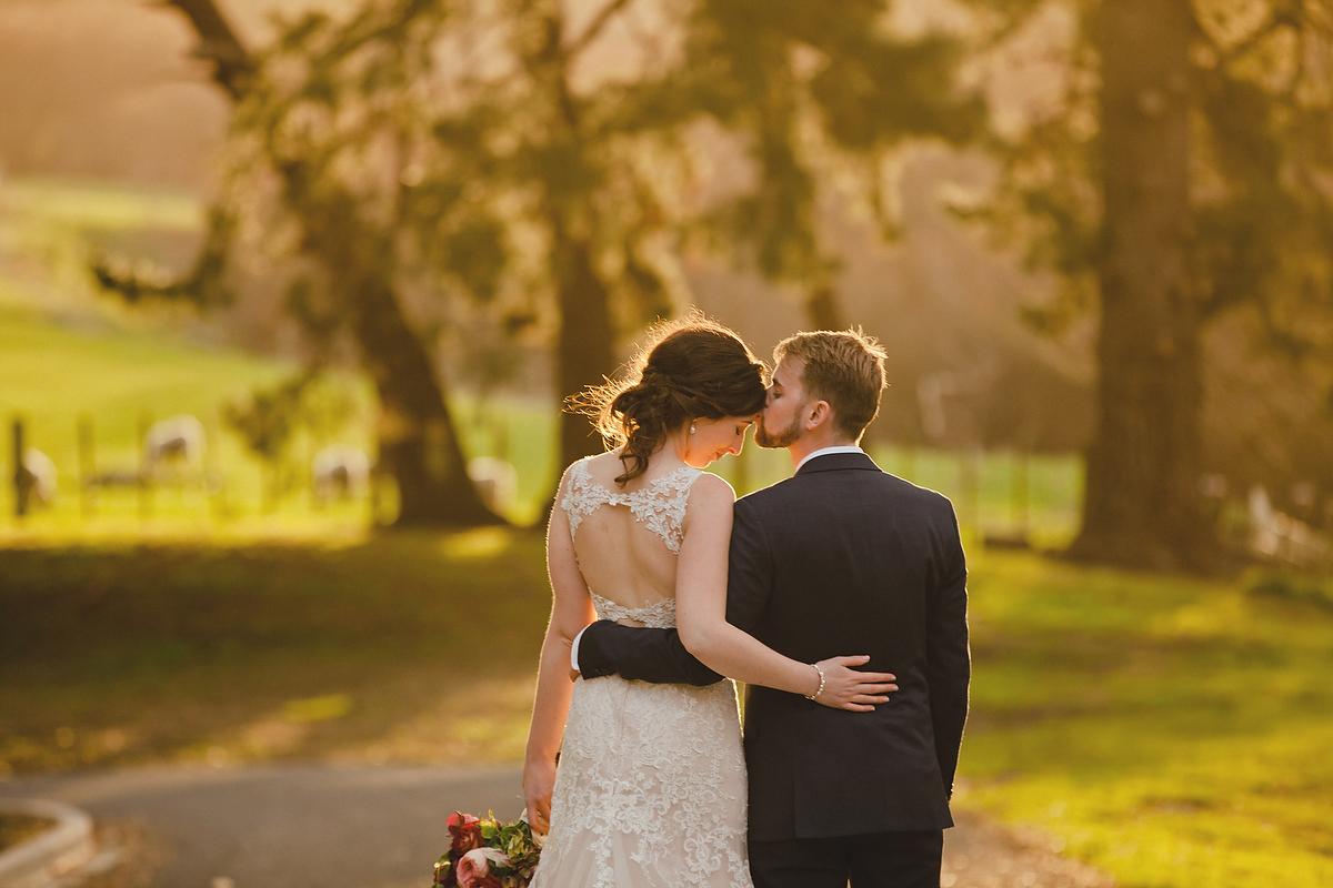 wellington wedding photography NZ - 0178.JPG