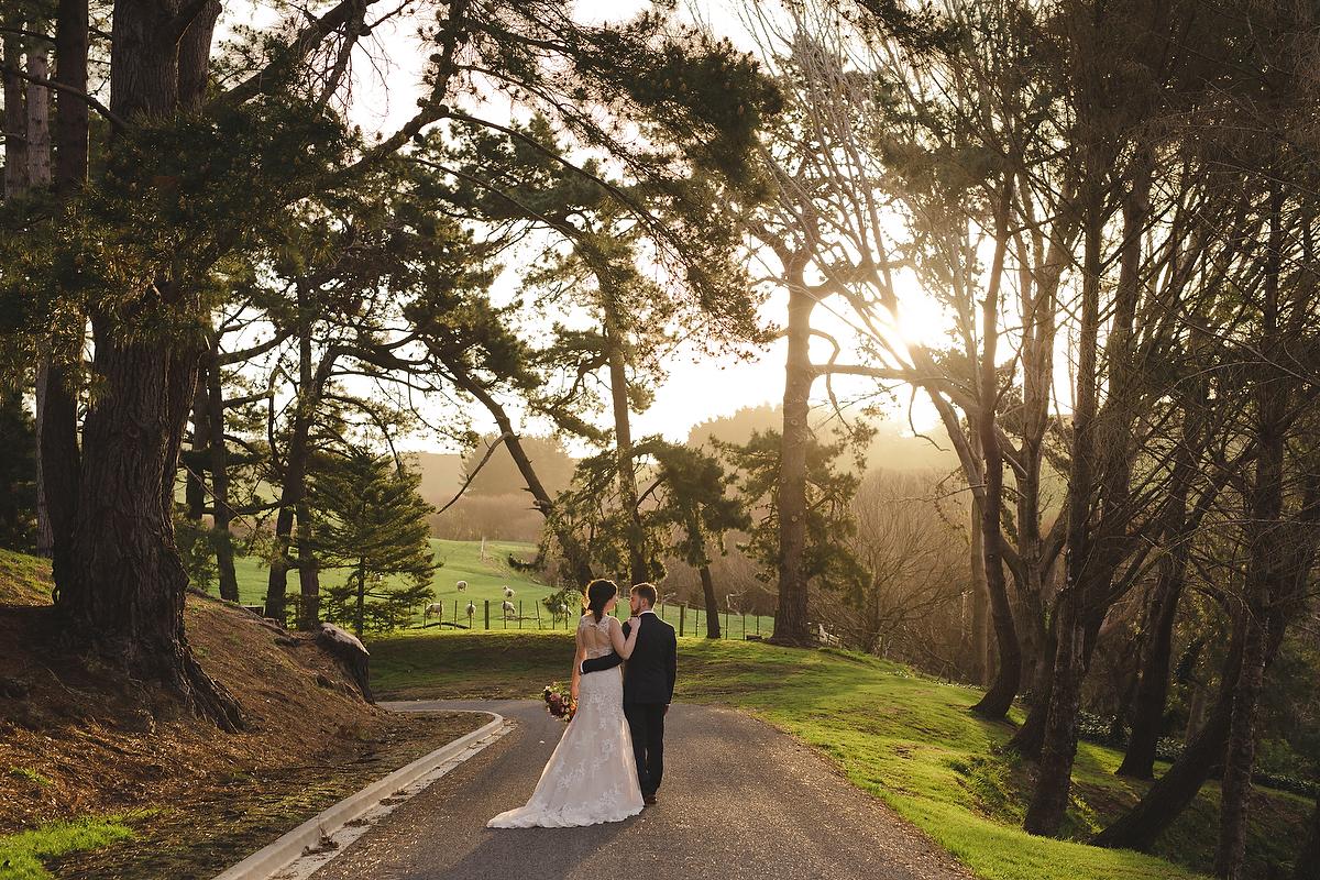 wellington wedding photography NZ - 0184.JPG