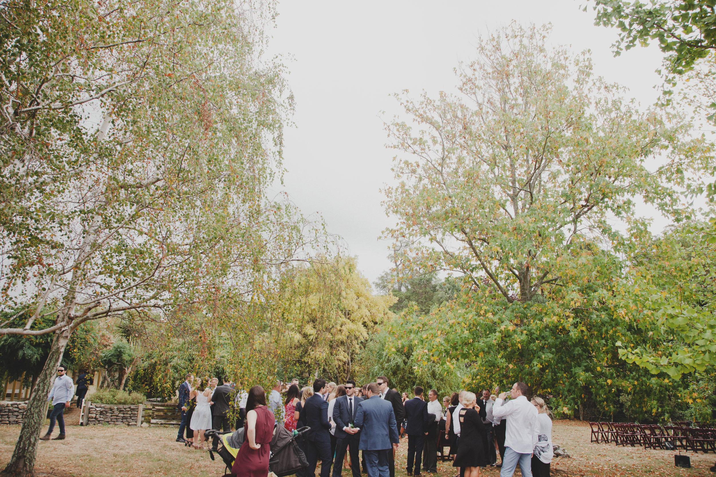 wellington wedding photography NZ - 1049.JPG