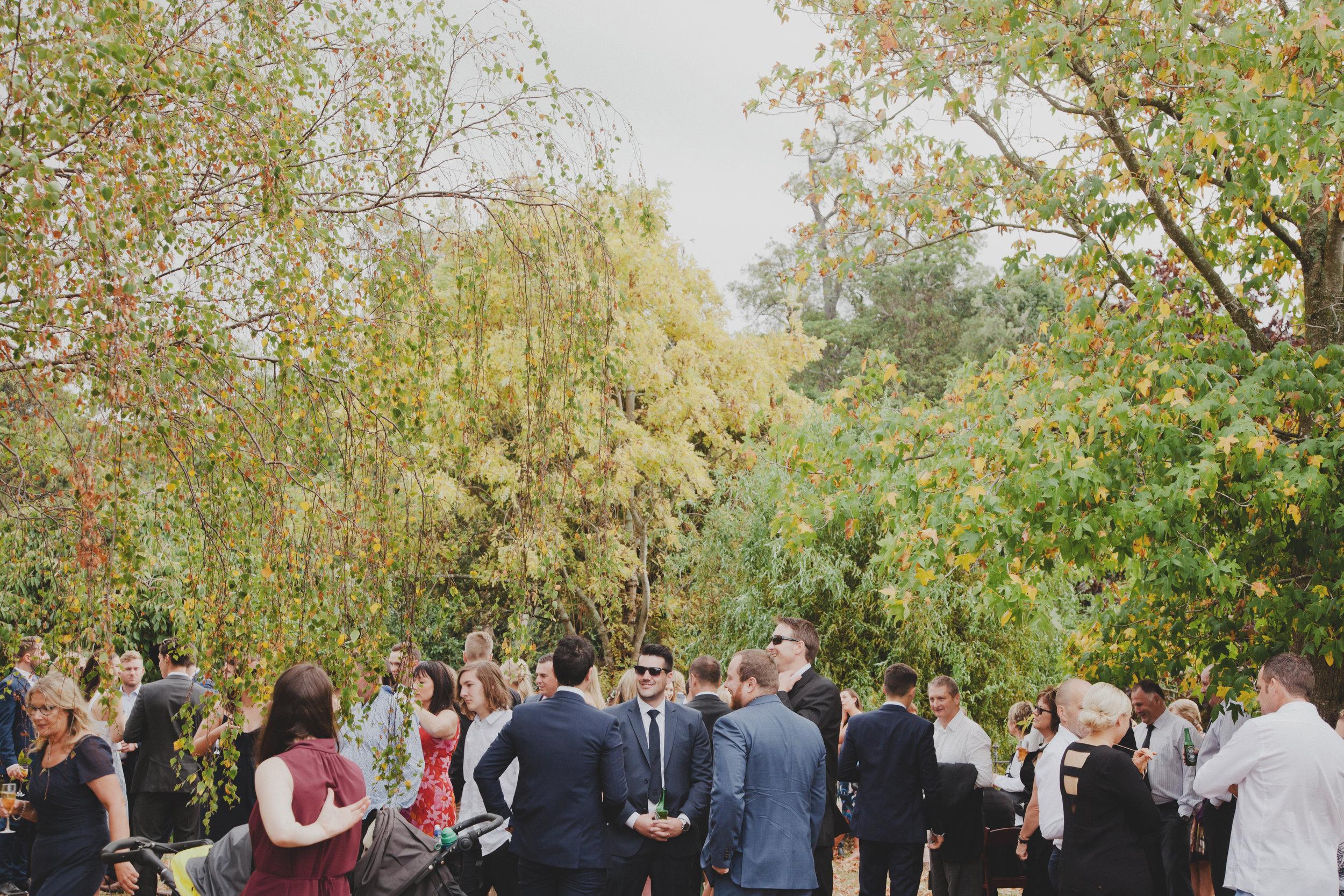wellington wedding photography NZ - 1053.JPG