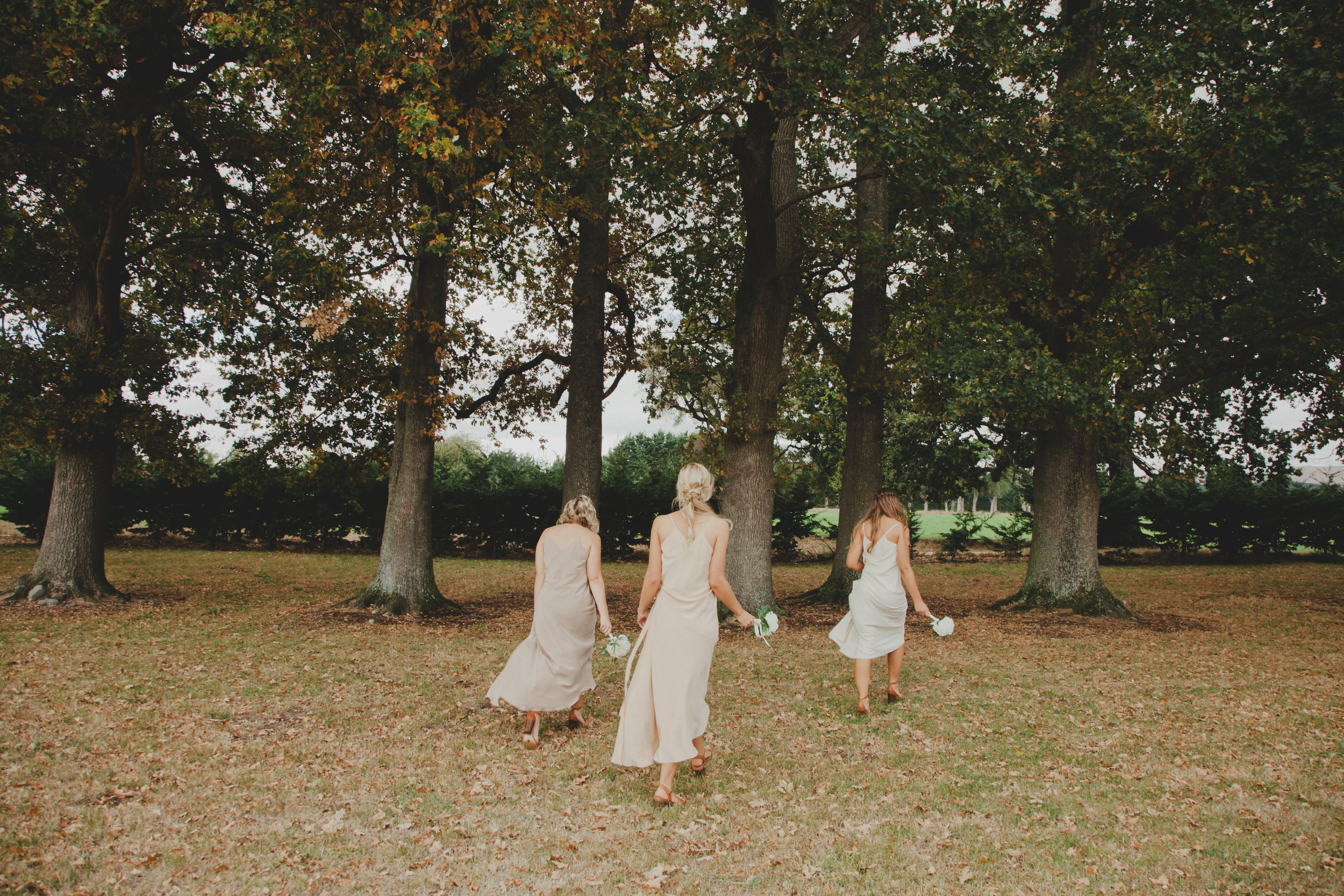 wellington wedding photography NZ - 1065.JPG