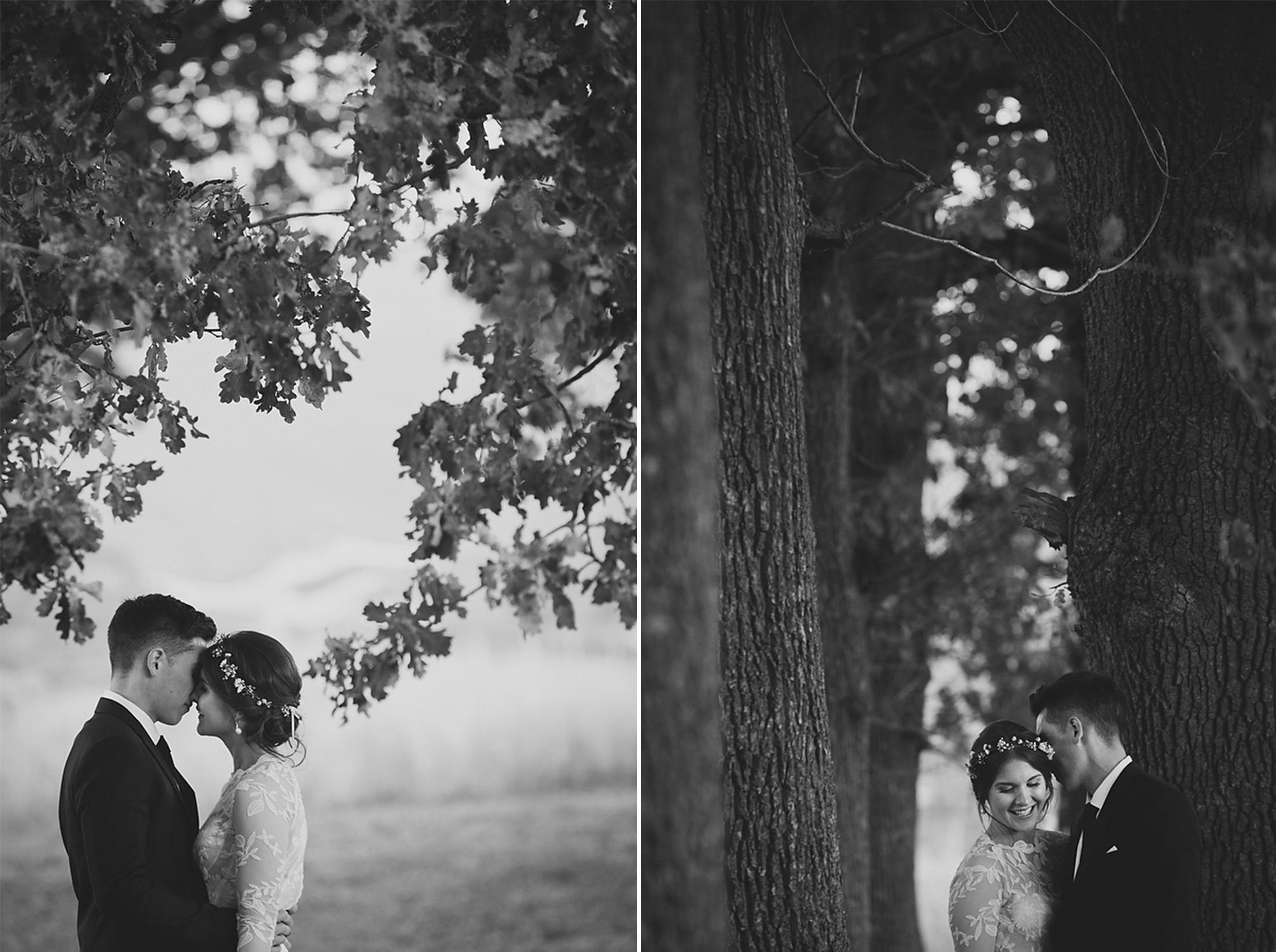 wellington wedding photography NZ - 1073.JPG