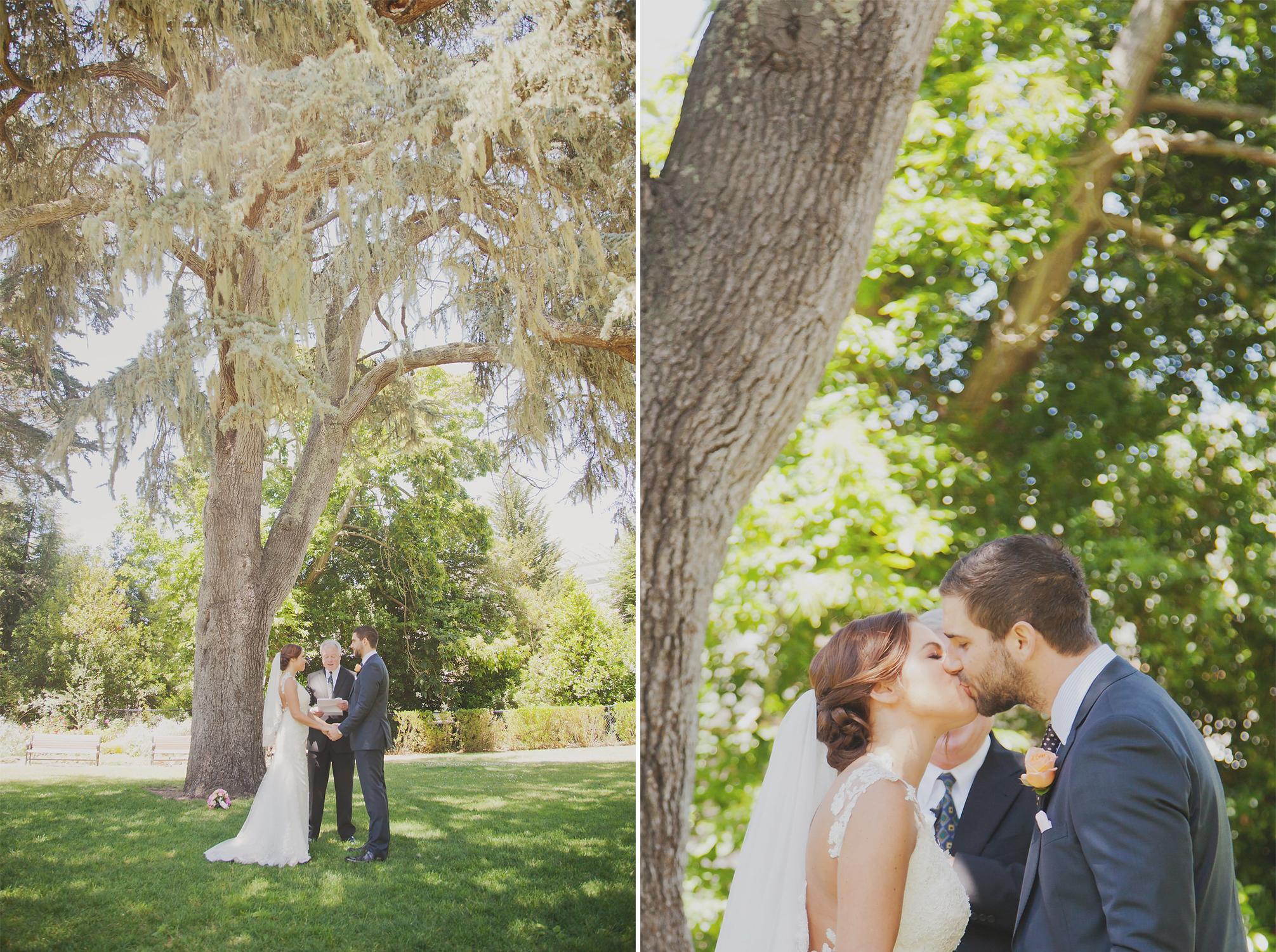 wellington wedding photography NZ - 0232.JPG