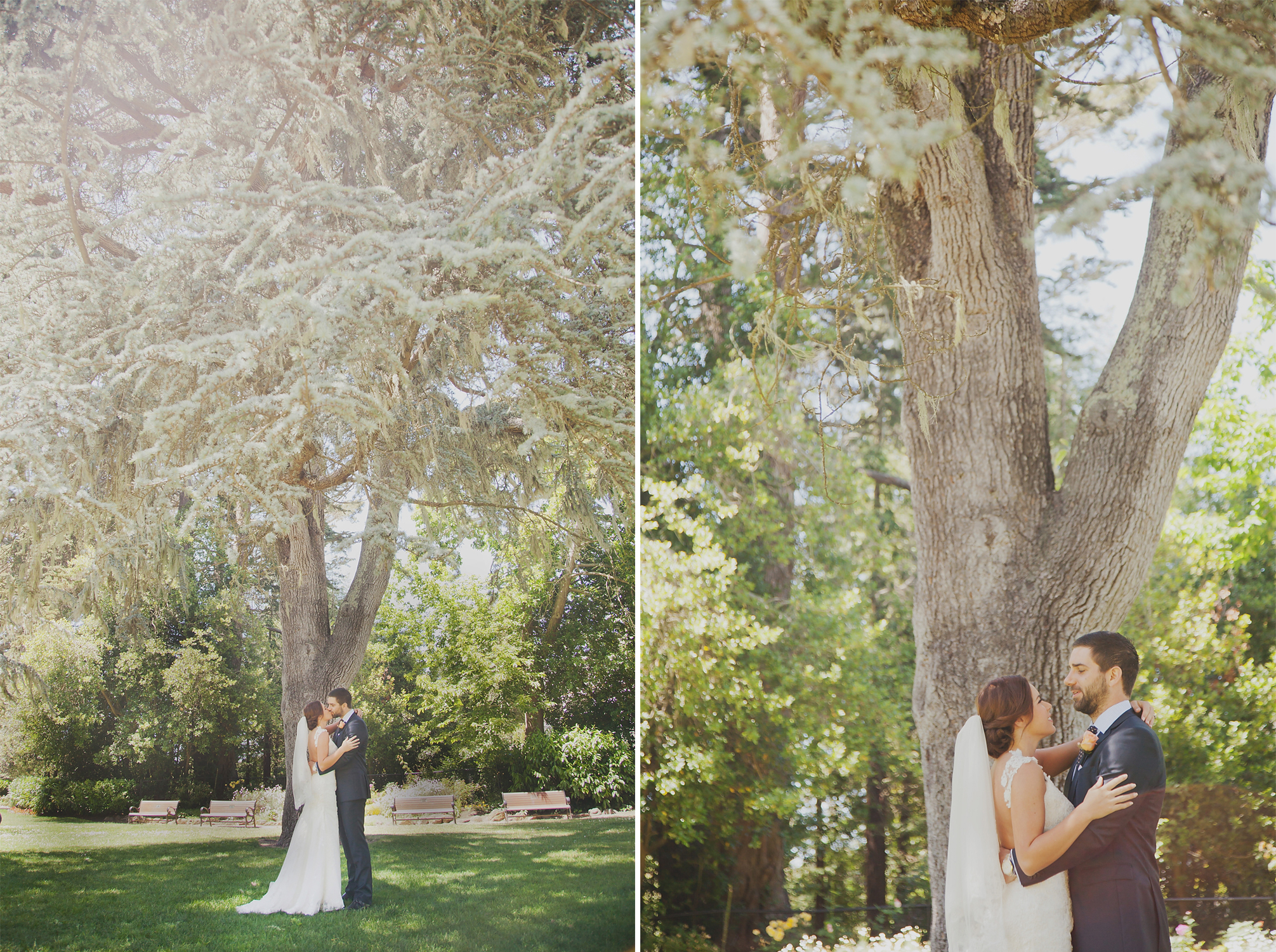 wellington wedding photography NZ - 0235.JPG